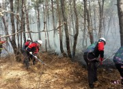 3. 경주시 대형산불 특별대책기간 운영 (2)