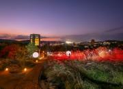 전국 최초의 야간 체험형 산책코스인 경주엑스포대공원 '신라를 담은 별(루미나 나이트 워크)' 전경